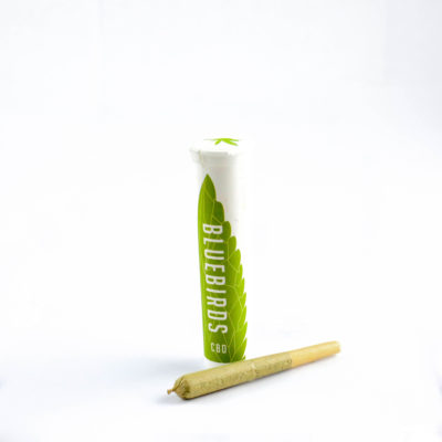 Medi-Haze Single Preroll